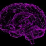 14 einfache Tipps für ein gesundes Gehirn